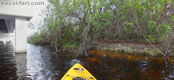 Flex Maslan Shark River Slough Everglades photography skyway bridge kayak River Grass kayakfari environment paddle water sfwmd restoration tamiami trail