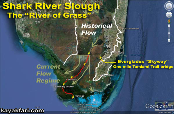 Flex Maslan Shark River Slough Everglades skyway bridge kayak River Grass kayakfari environment paddle water sfwmd restoration tamiami trail satellite