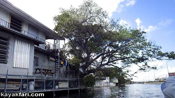 Flex Maslan kayak Miami river kayakfari paddle Biscayne bay south florida photography scenic history shipyard urban