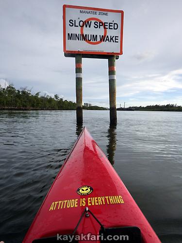 Flex Maslan kayakfari port everglades kayak inlet oasis cruise ship danger rip current paddle ft lauderdale ocean