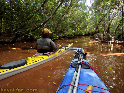 Flex Maslan Kayak Everglades homestead canal kayakfari bear mud lake canoe flamingo trail mound bugs camp 2016