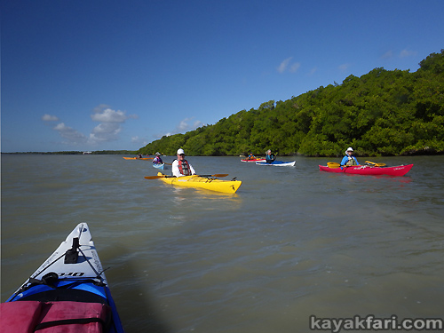 Kayak Everglades kayakfari bay Florida Paddlers Rendezvous flamingo bugs camp paddle bushpaddlers 2016