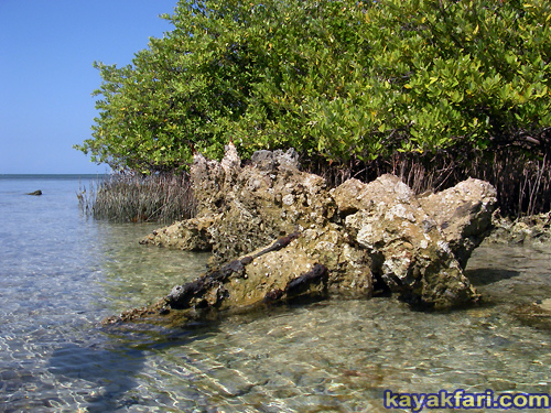 Flex Maslan Kayak Miami photography kayakfari fowey rocks lighthouse Soldier Key Cape Florida paddle biscayne sombrero