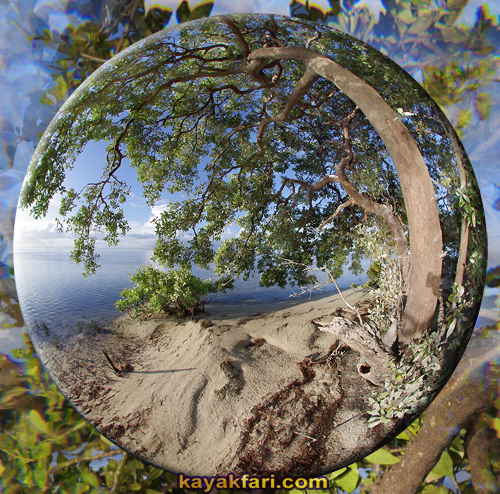 Flex Maslan kayakfari everglades art kayak photography lens bubble florida bay fisheye camp keys