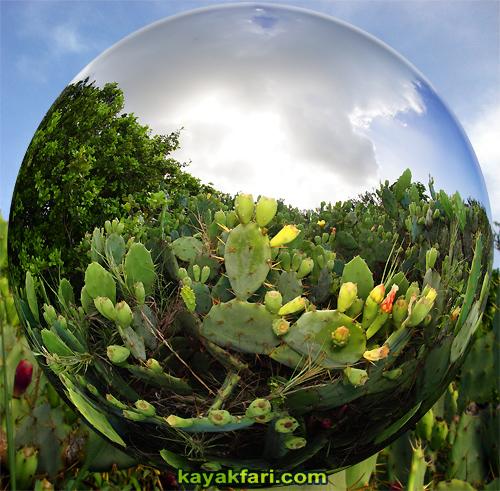 Flex Maslan kayakfari everglades art kayak photography lens bubble florida bay fisheye camp keys