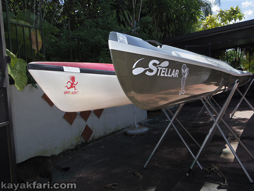 Flex Maslan kayakfari stellar ses findeisen shearwater surfski fish form swede form kayak paddle miami comparison review