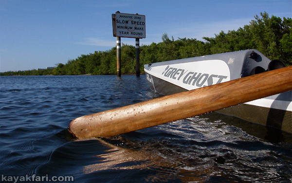Flex Maslan kayakfari stellar surfski ses multisport kayak grey ghost miami biscayne vkoc paddle tuktu greenland