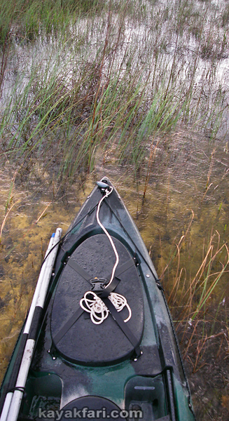 Flex Maslan everglades kayakfari paddle Sweet Bay Pond Ingraham liquor canoe kayak hurricane Irma prairie