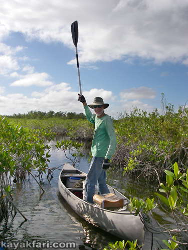 flex maslan kayakfari everglades mahogany hammock lane bay kayak canoe paddle pahayokee off-trail mangrove grass