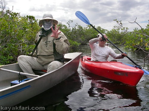 flex maslan kayakfari everglades mahogany hammock lane bay kayak canoe paddle pahayokee off trail mangrove mahogany hammock  u2013 lane bay loop of the 2017 invitational paddle      rh   kayakfari wordpress
