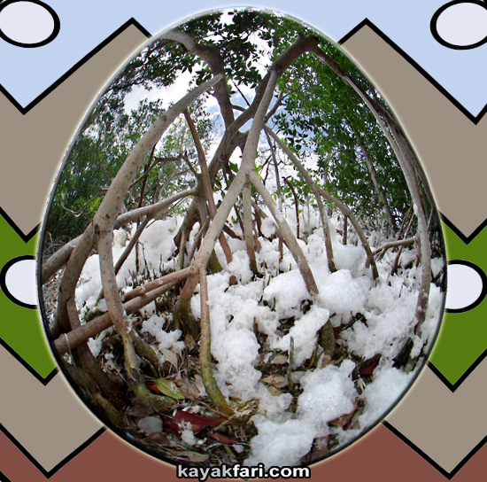 Flex Maslan easter egg decoration everglades kayakfari circular fisheye photography kayak camp panorama 360 art 180 florida