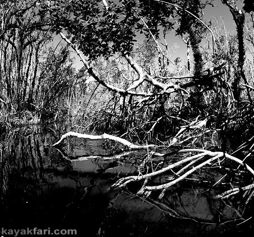 Flex Maslan Kayak Everglades mangrove irma kayakfari dark photography horror tales moon spiders hurricane black white