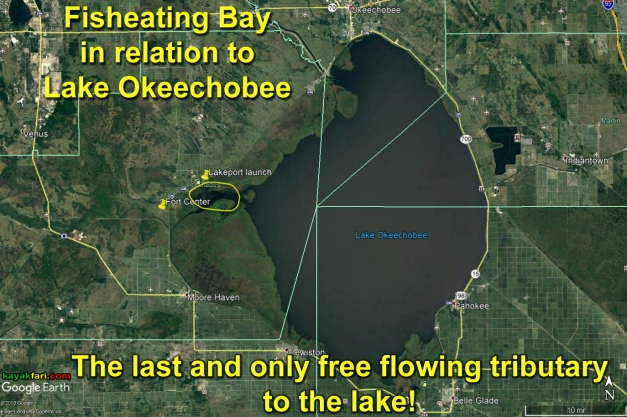 flex maslan kayakfari lake okeechobee kayak fisheating everglades paddle green algae pollution satellite