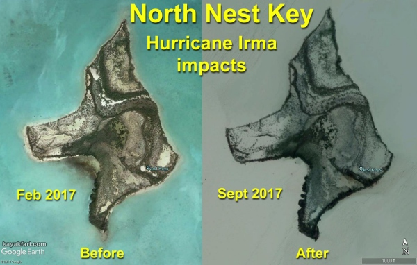 flex maslan kayakfari nest key largo kayak camp storm everglades photography paddle florida bay beach stars satellite