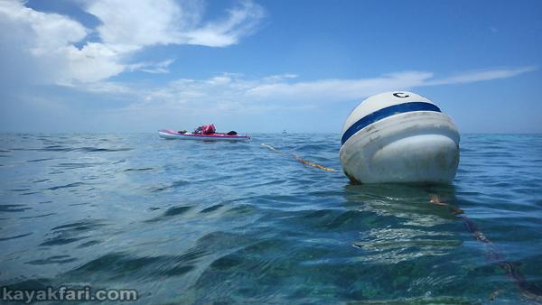 flex maslan Kayakfari carysfort reef lighthouse kayak paddle key largo pennekamp dive coral history photography surfski park mooring buoy