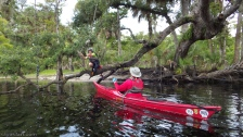 flex maslan photography kayakfari fisheating creek fec adventure paddle kayak sfp palmdale florida river