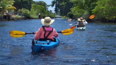 flex maslan kayakfari photography kayak paddle wilton manors city loop Colohatchee park island ft lauderdale river