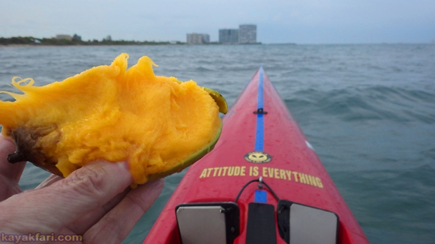 flex maslan kayakfari coronavirus kayak paddle covid-19 quarantine ft lauderdale photography port everglades mango
