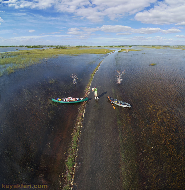 Flex Maslan kayakfari everglades high water paddle kayak photography shark valley flooded sawgrass prairie dwarf cypress