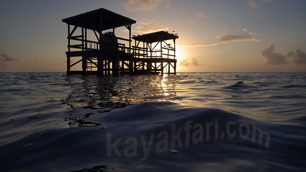Flex Maslan kayakfari everglades kayak johnson key chickee paddle camp florida bay flamingo photography